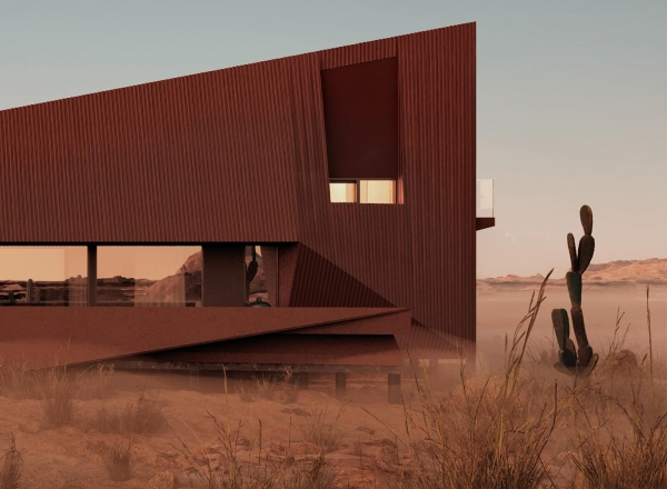 The Two Skins House/DESERT