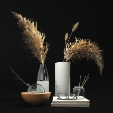 Decor set with dry plants