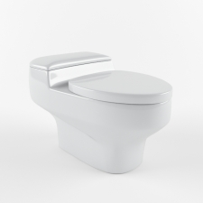 Vision One Piece Toilet CW825J