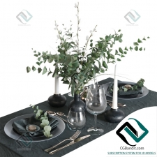 посуда Table setting 10