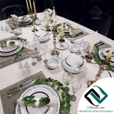 посуда Table setting 11