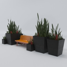 Architectural outdoor bench and plant